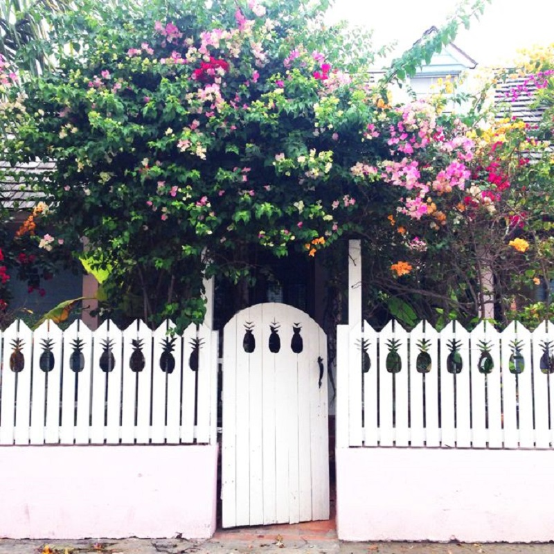 fence styles - fence designs - pineapple - white picket fence - photos - xtreme edeals