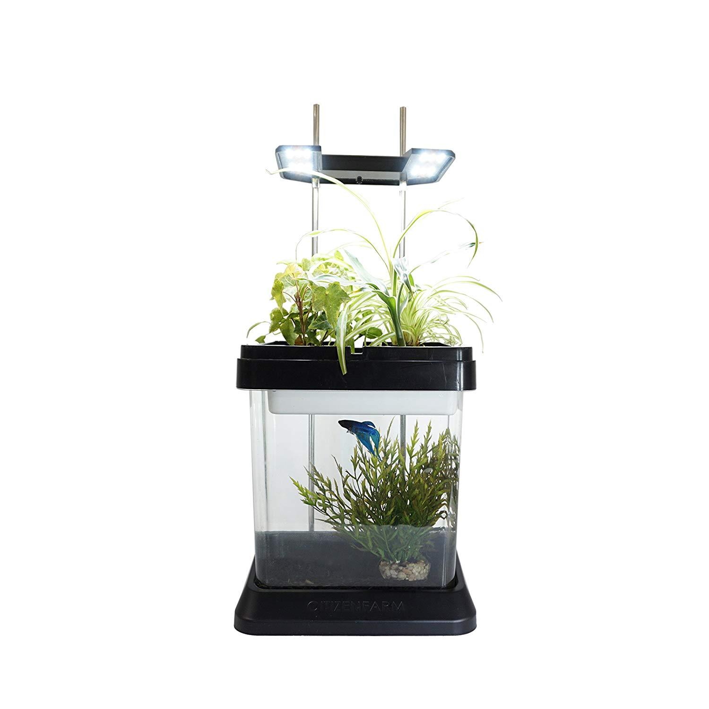 aquarium planter