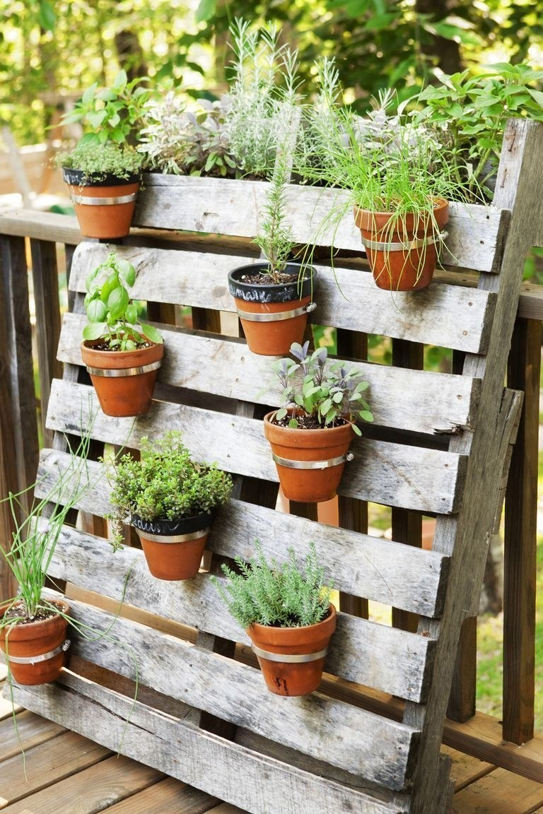 extra wall planters