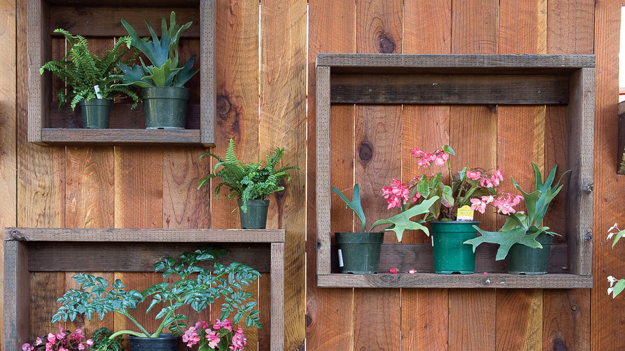 pant shelf vertical garden