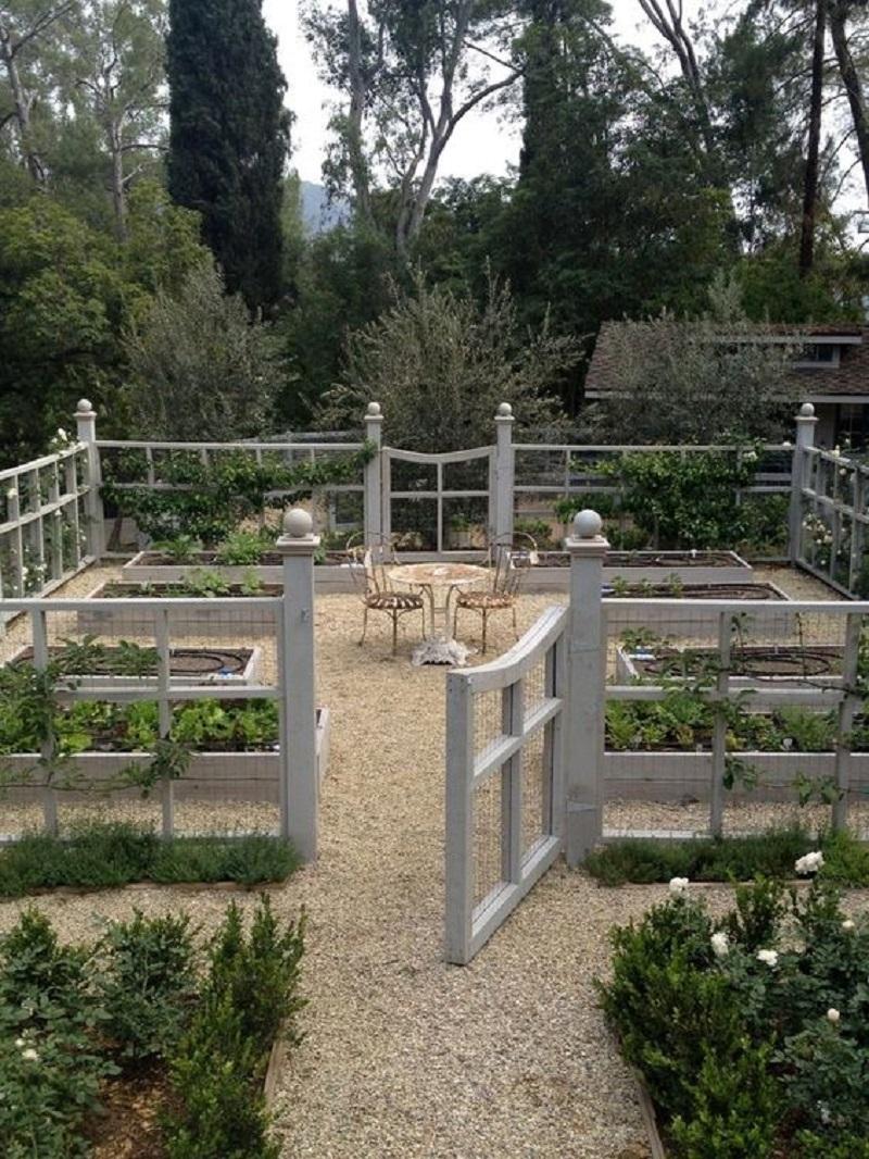 veggie garden fence-800