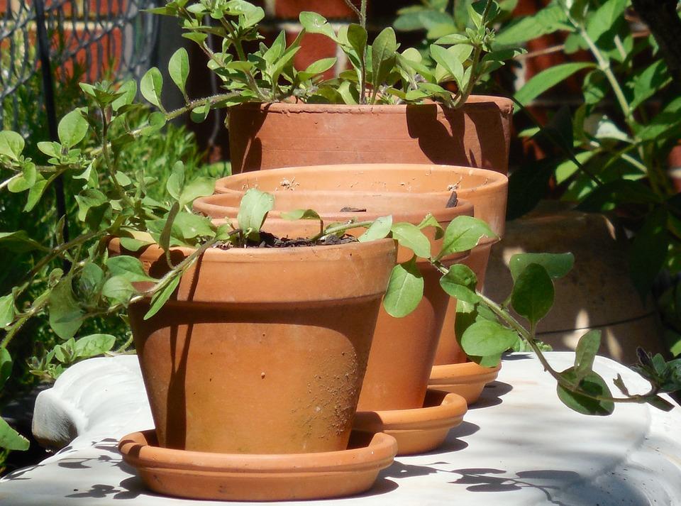 gardener workbench